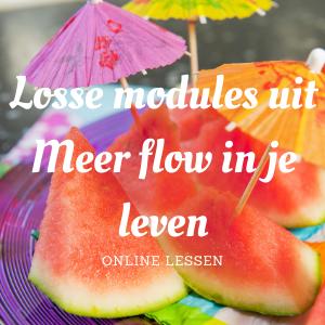 Losse modules uit Meer flow in je leven